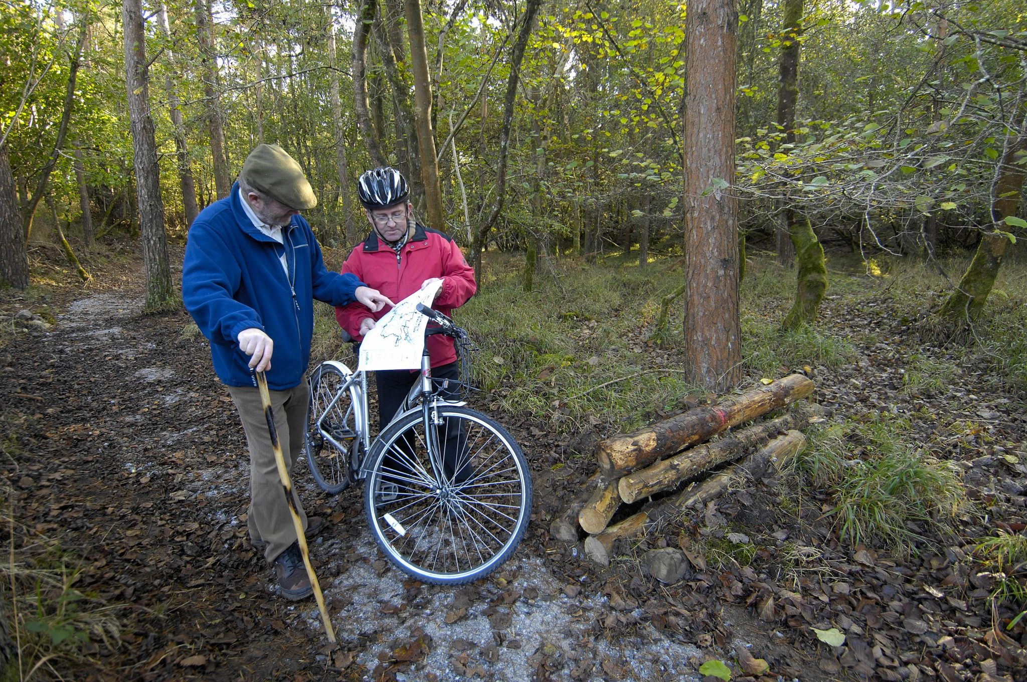 People using Coillte Forest Trail