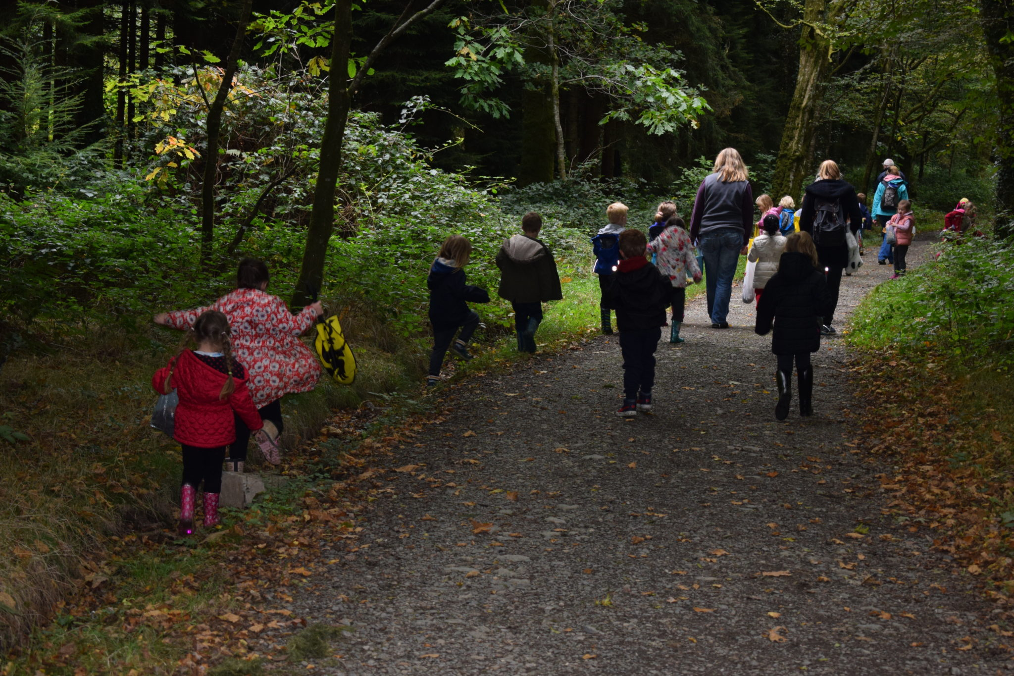 Walk in woods with school children for Tree Day