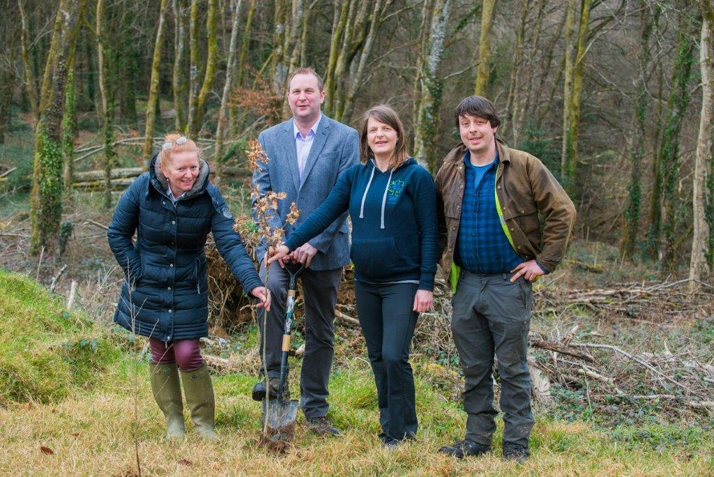 Picture of Coillte and An Taisce planting a tree at Curragh Chase forest park