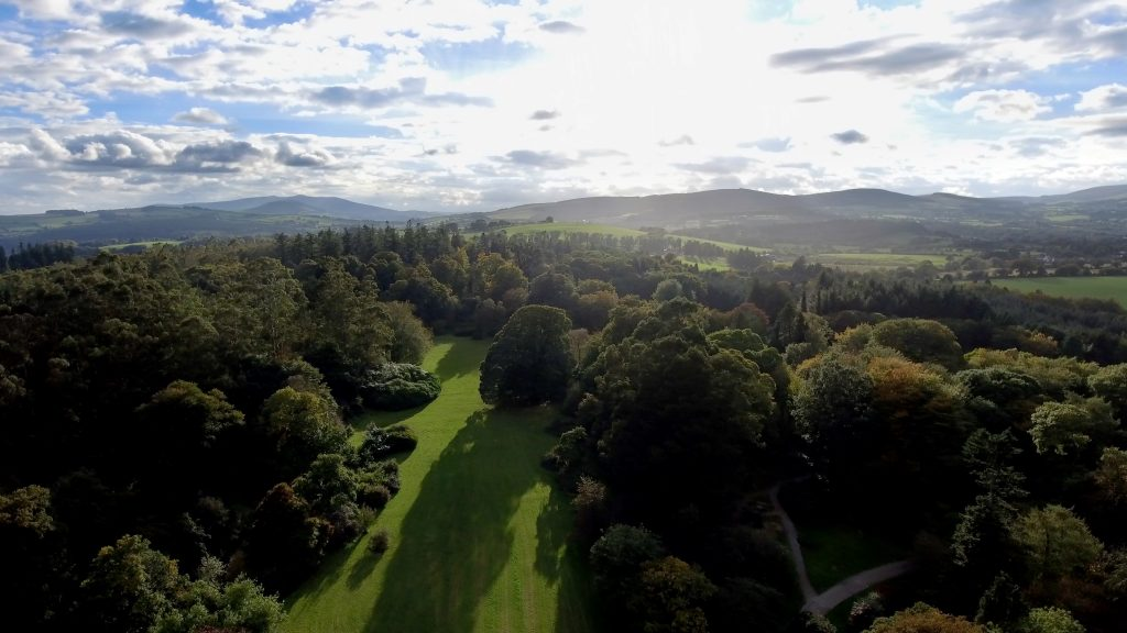 Picture of Coillte's Avondale Forest Park