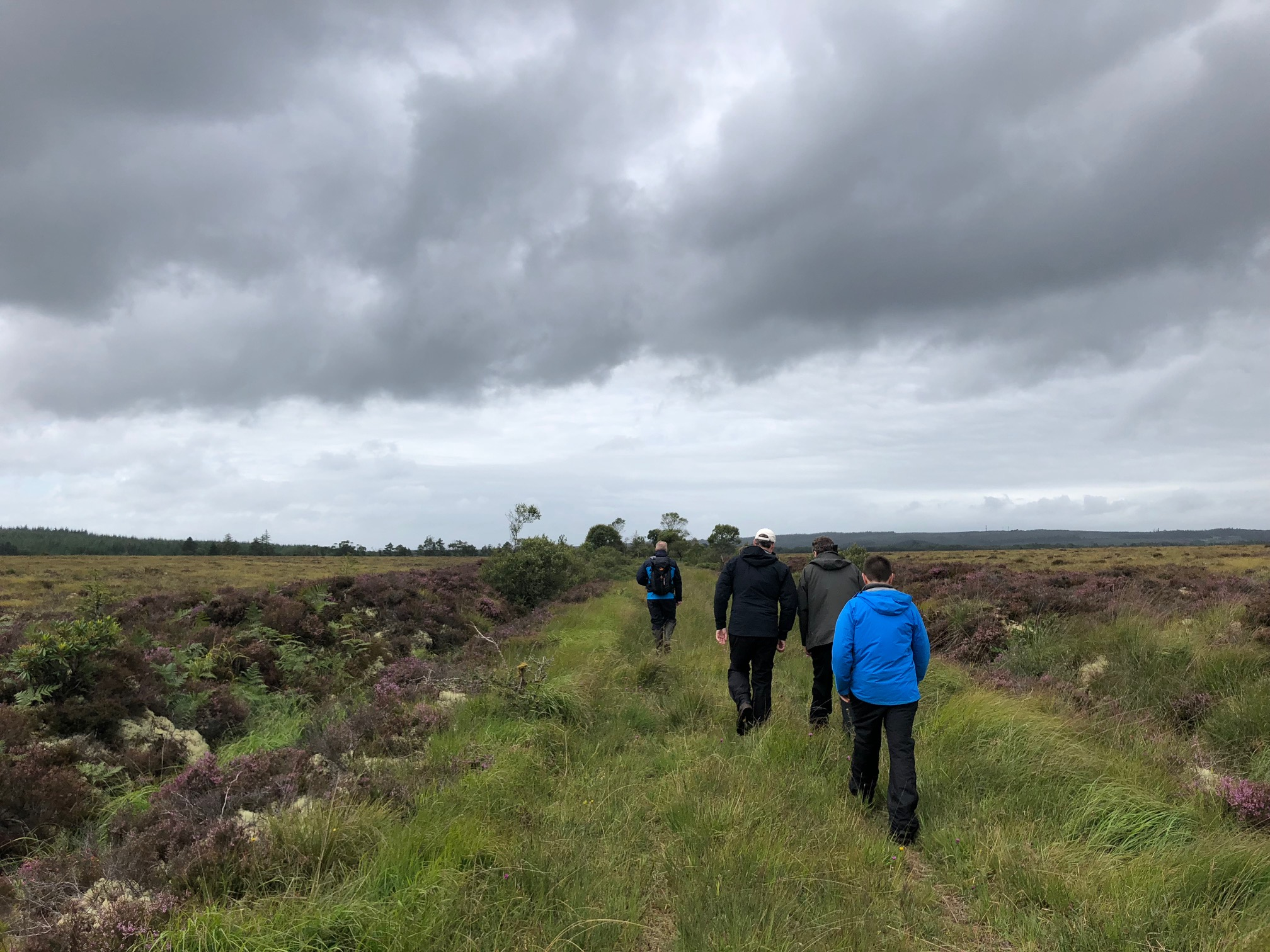 Picture of raised bog with people walking on it