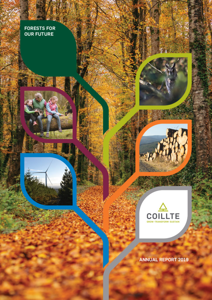 Picture of the cover of the Coillte Annual Report 2019 showing a forest pathway and the report title forests for our future