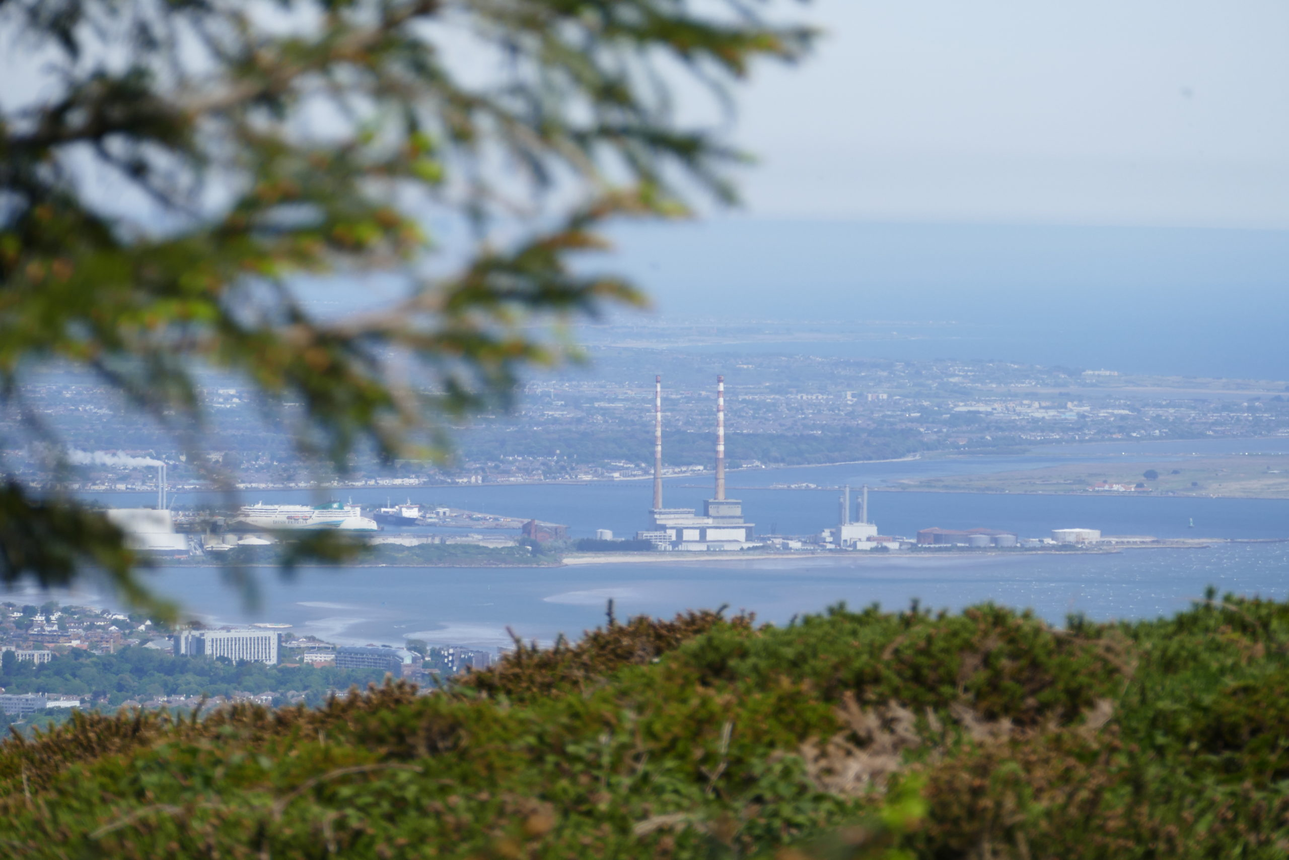 Picture of Dublin taken from Coillte's dublin mountain forests