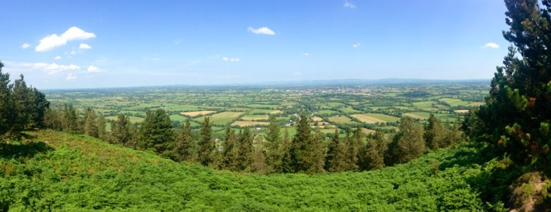 Panoramic view of the forests of the Glen of Aherlow