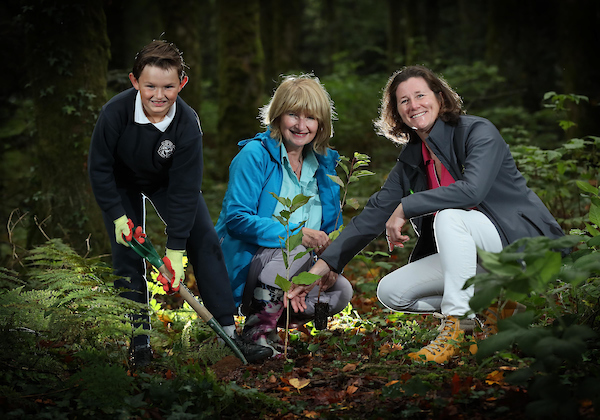 Coillte and EasyTreesie Plant Trees to mark national tree day